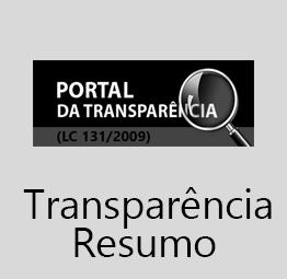 Esta aba apresenta algumas das principais informações relacionadas ao portal, aqui o modo de pesquisa é facilitado além de permitir baixar as informações em diversas extenções...